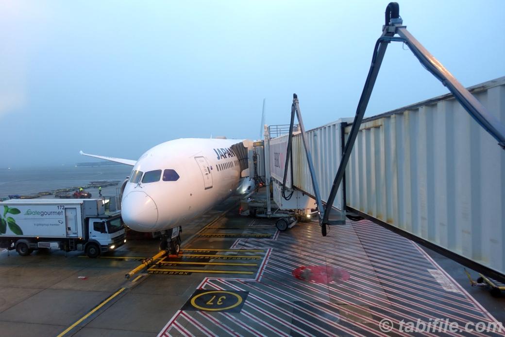 JAL JL771